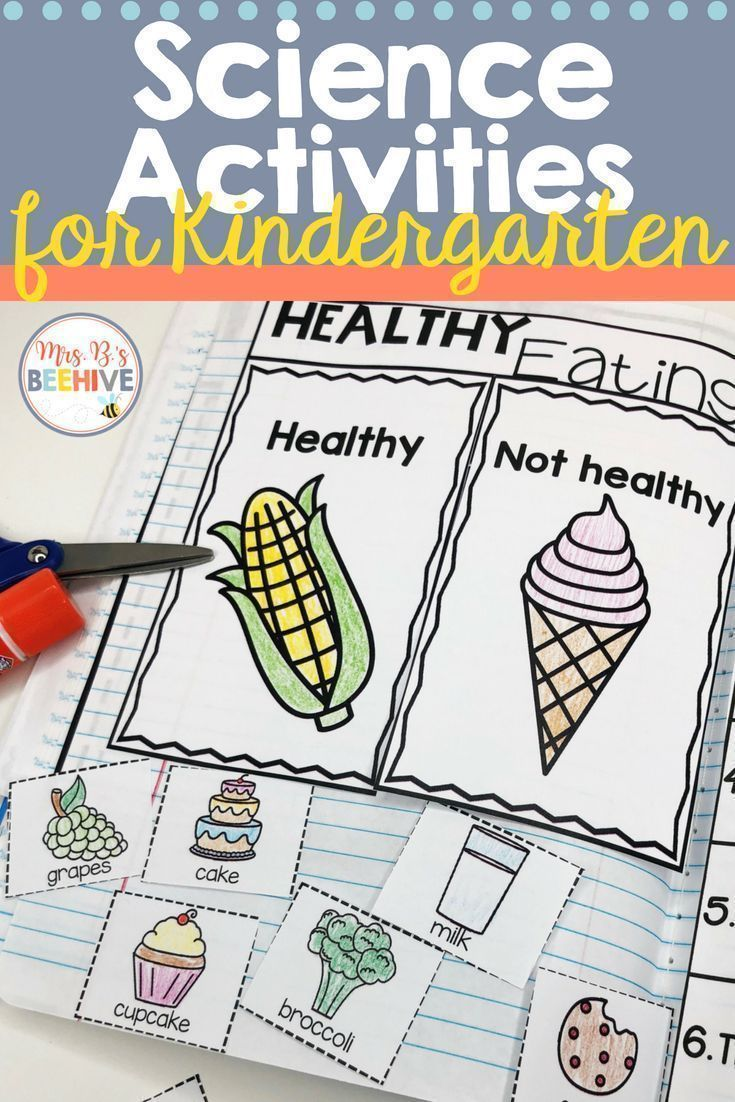 Kindergarten Science - Interactive Journal | Cori Blubaugh - Mrs