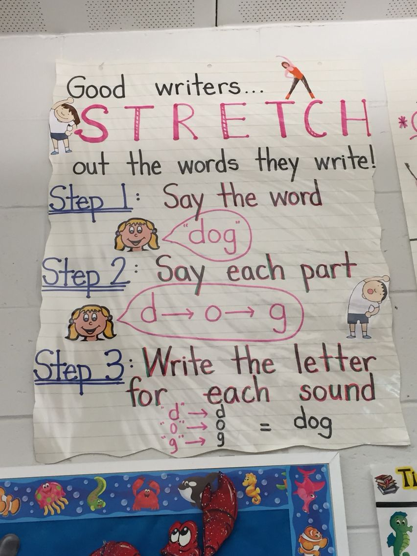 Stretching Out Words | 1st Grade Writing | Kindergarten Anchor