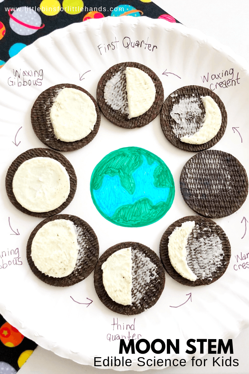 Oreo Moon Phases Activity | Kindergarten | Science Classroom