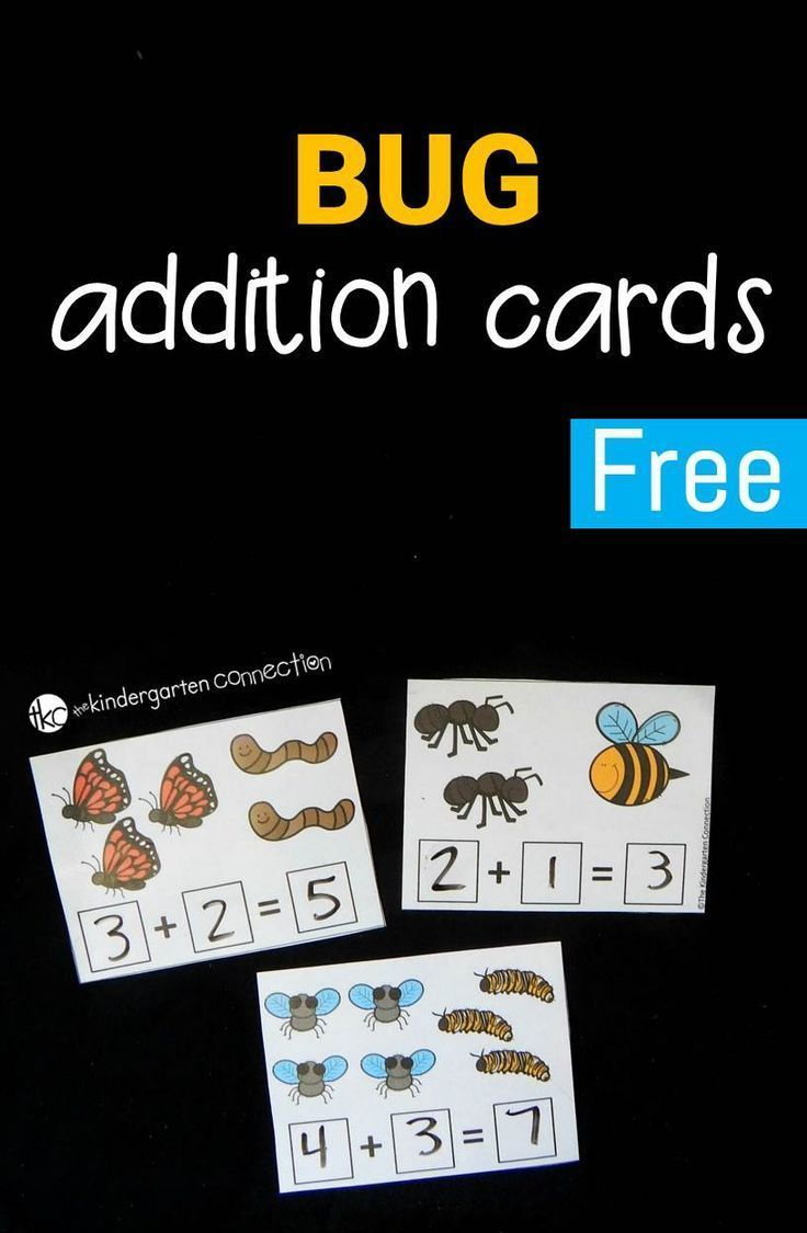Bug Addition Cards | Kindergarten | Preschool Math, Kindergarten