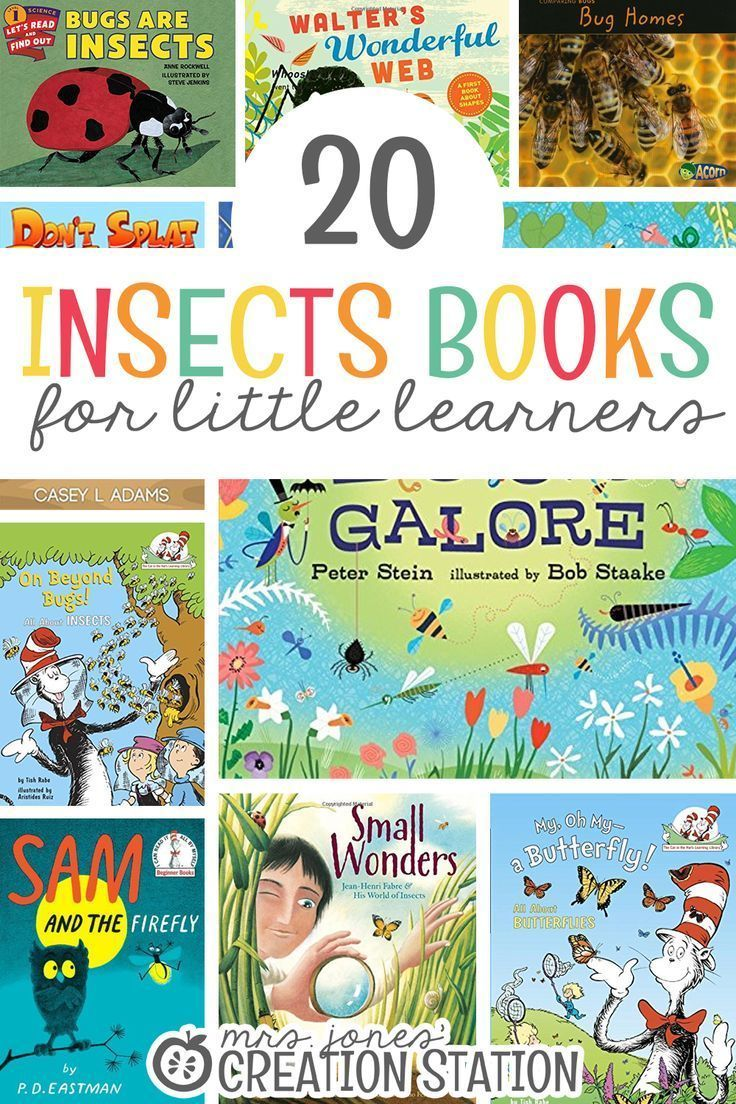 20 Insect Books For Little Learners | Kindergarten Resources