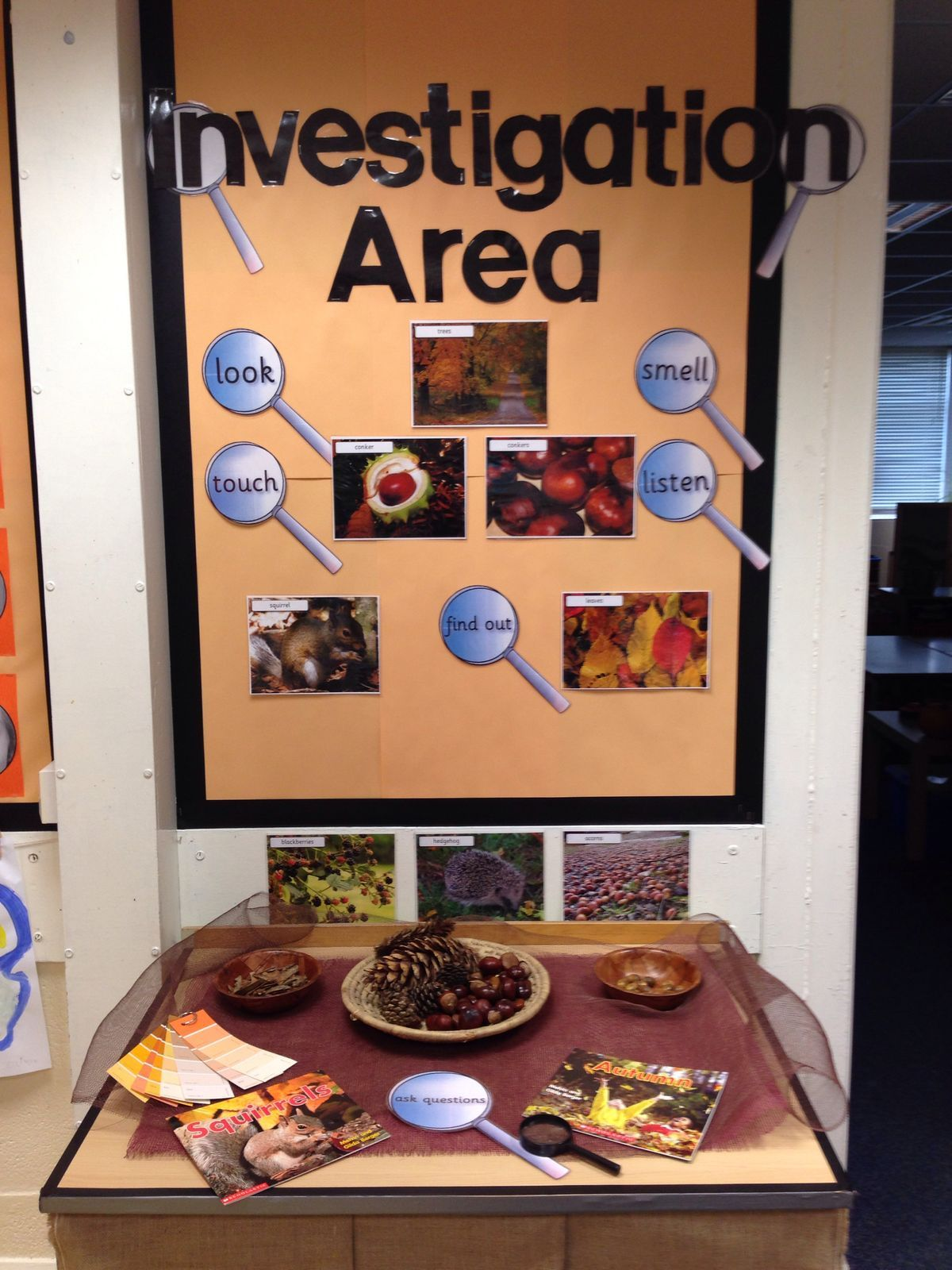 Pin By Lil On Library | Eyfs Classroom, Kindergarten Science