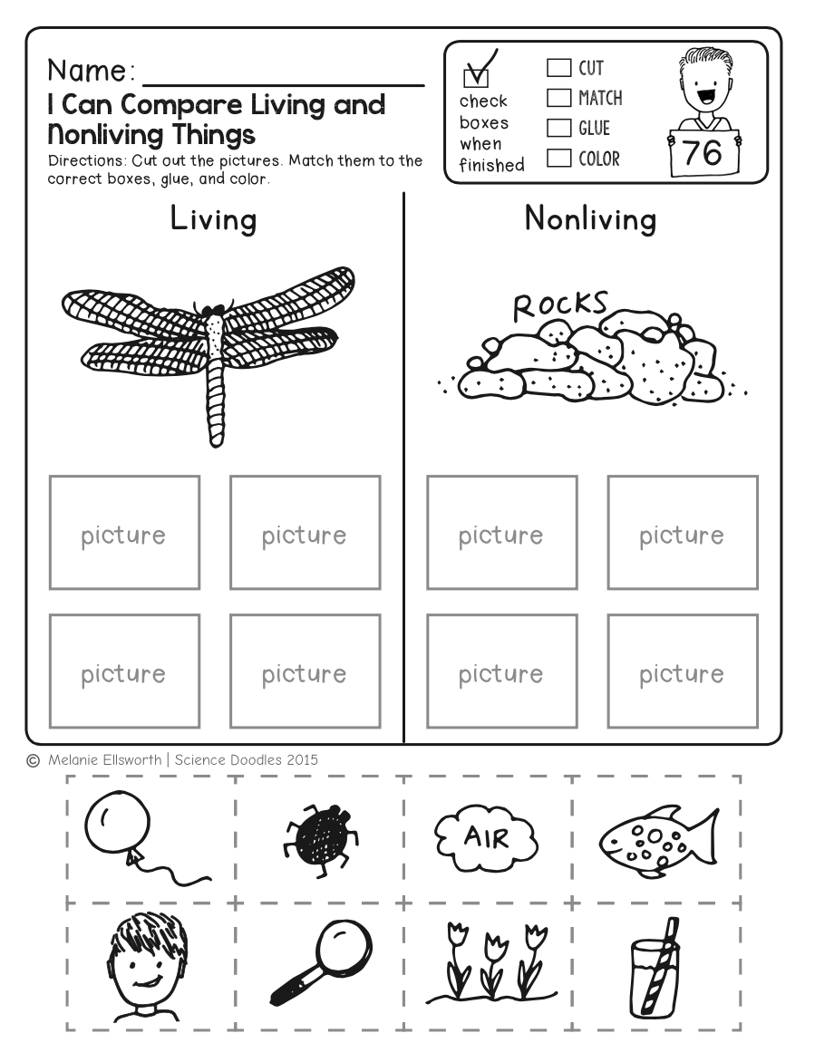 Freebie! No-prep Kindergarten Science Doodle Printables | Education