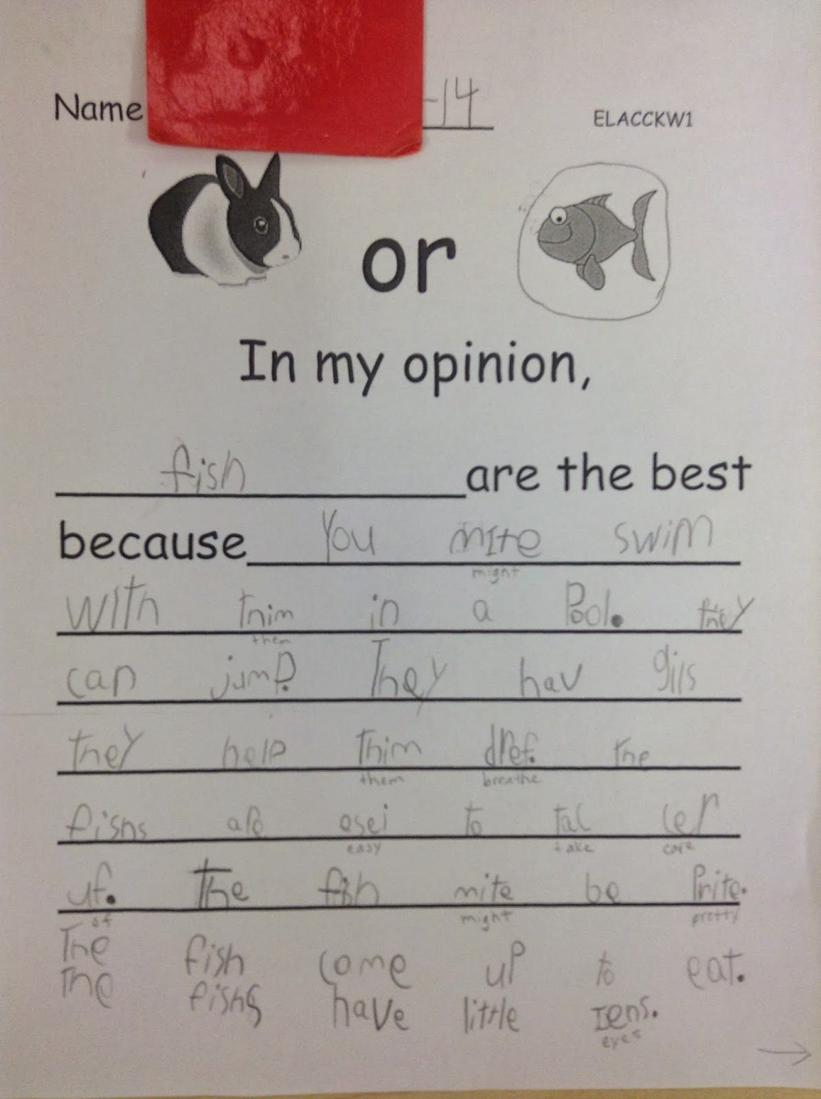 Dr Clements' Kindergarten : More Opinion Writing For